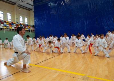 ICD-Karate-Sandra-Sanchez-1