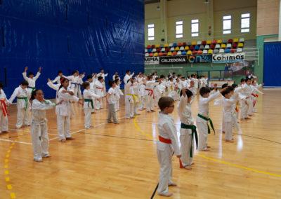 ICD-Karate-Sandra-Sanchez-2