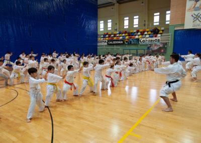 ICD-Karate-Sandra-Sanchez-4