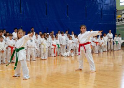 ICD-Karate-Sandra-Sanchez-7