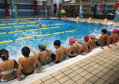 alumnos de espaldas practicando natación