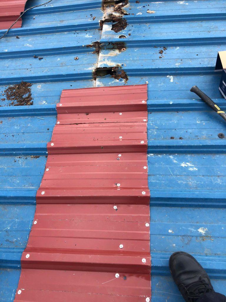 Reparación de la cubierta del Guillermo Molina placas