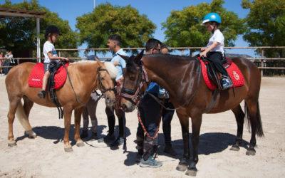 El Instituto Ceutí de Deportes reanuda todas sus clases de hípica